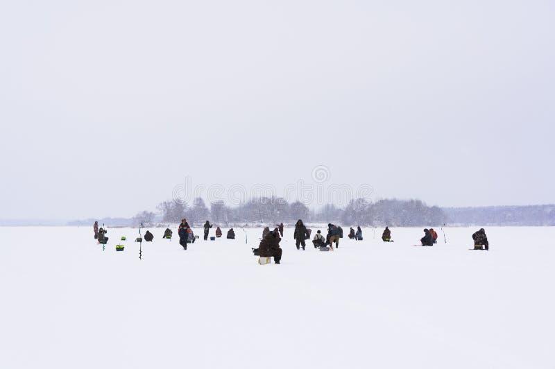Viele Fischer fischen Gerade liegt aufgefangener Fisch auf Eis lizenzfreie stockfotografie