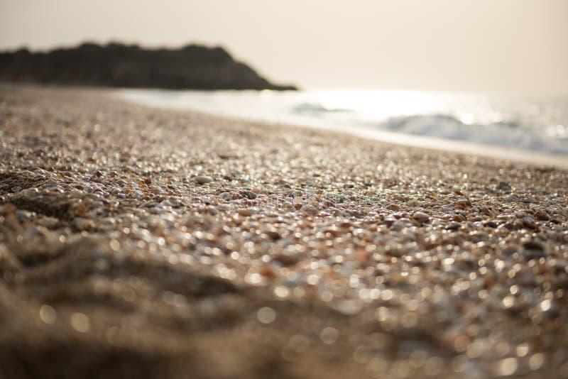 Viele leeren Muscheln auf den Ufern des Mittelmeeres lizenzfreies stockbild