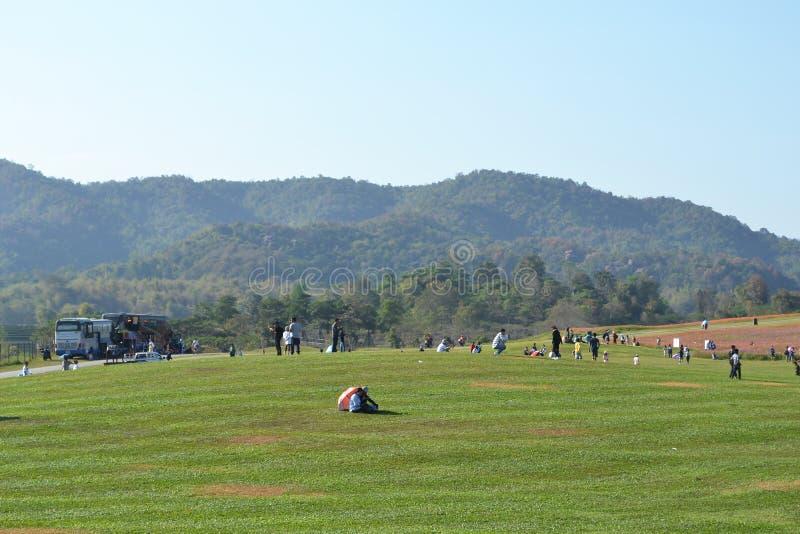 Viele Leute auf dem Rasen nahe dem Berg stockfoto