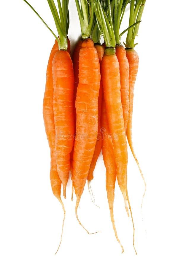 Viele orange Karotten lokalisiert auf weißem Hintergrund lizenzfreie stockfotos
