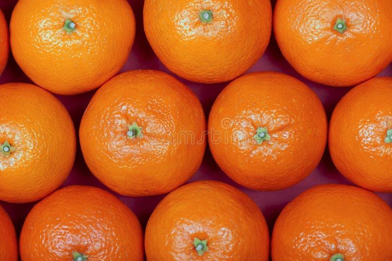 Viele organischen Orangen gelegt in Reihen stockfoto
