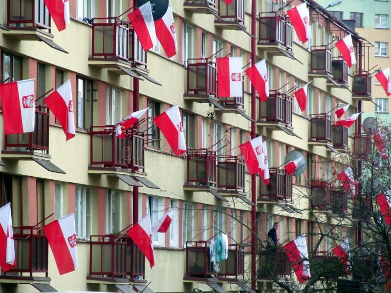 Viele polnischen Flaggen lizenzfreie stockfotografie