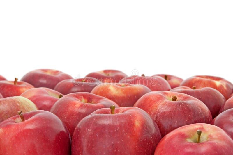 Viele roten Äpfel auf weißem Hintergrund lizenzfreie stockfotos