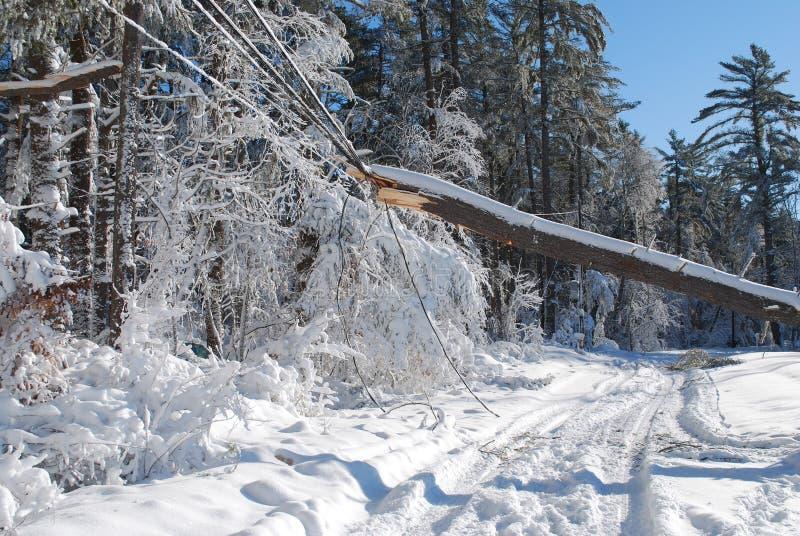 Viele Schnee die Landschaft nach einem Blizzard umfassend lizenzfreies stockbild