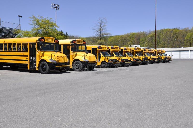 Viele Schulbusse lizenzfreie stockbilder