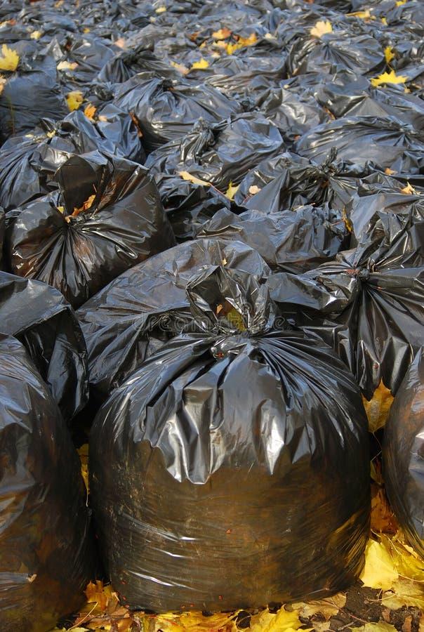 Viele schwarzen Abfallbeutel im Herbstpark lizenzfreie stockbilder