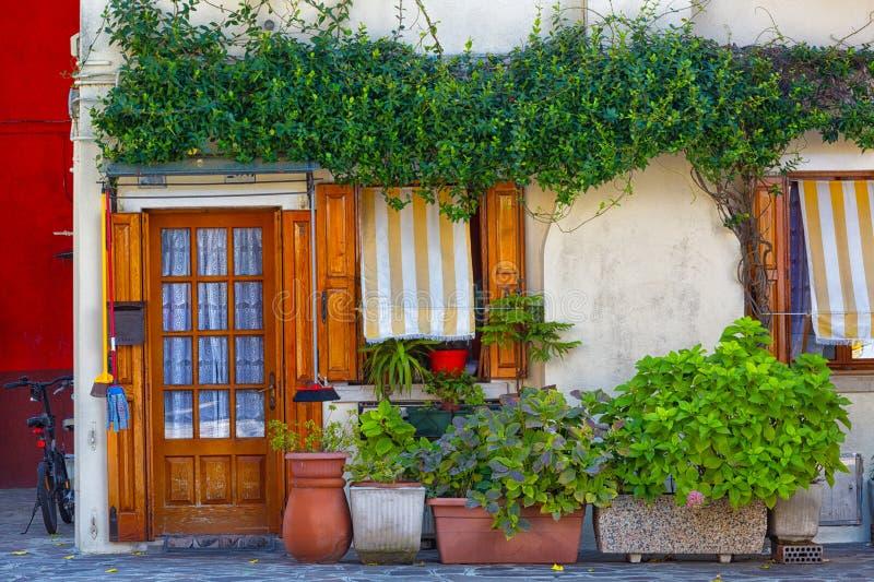 Viele Töpfe mit Anlagen nahe der Tür des Hauses, Burano stockbild