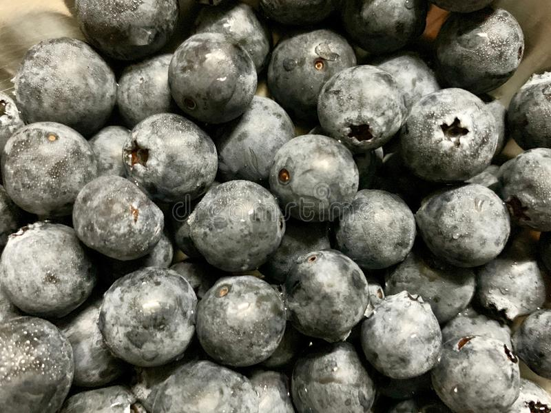 Viele von neuem Blaubeerhintergrund der Blaubeere viel auf dem Behälter rostfrei auf Regal im Supermarkt mit Unschärfe und Schatt lizenzfreies stockfoto