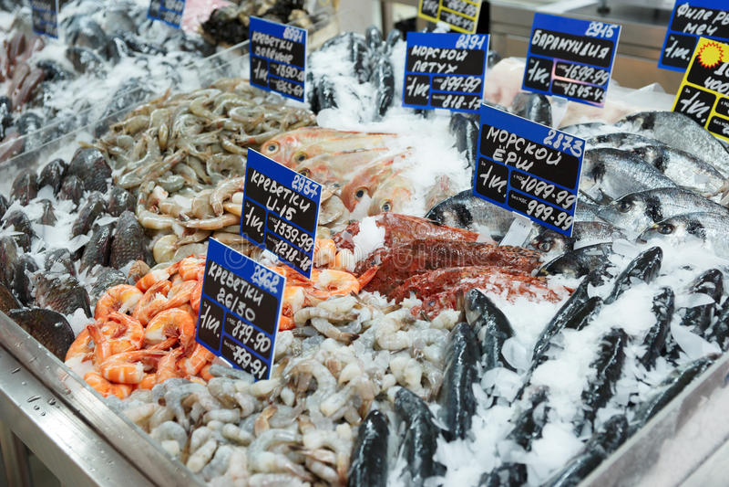 Vielzahl der Fische und der essbaren Meerestiere stockfoto
