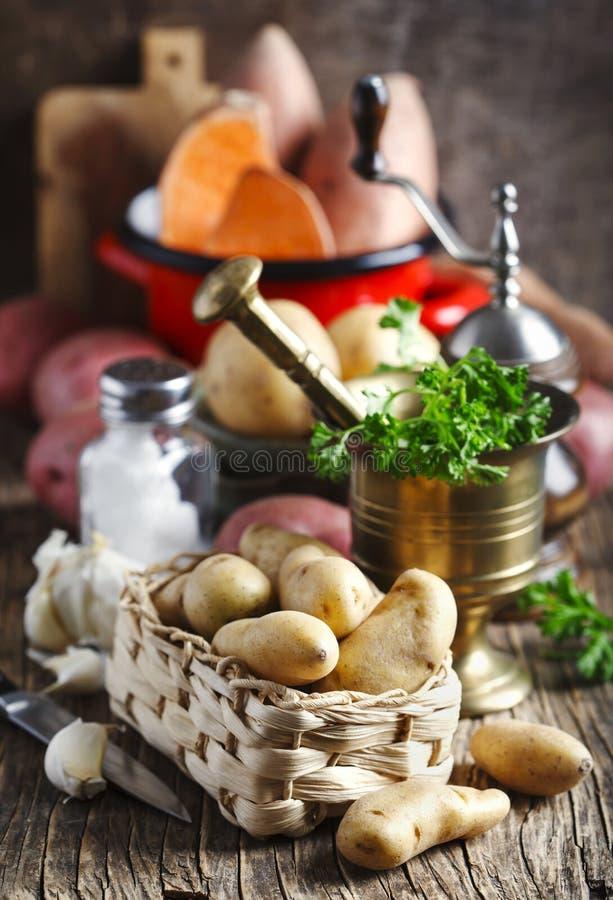 Vielzahl von rohen ungekochten organischen Kartoffeln: Rote, weiße, Bonbon- und Fingerkartoffeln stockbilder