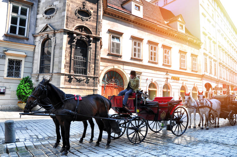 VIENA, AUSTRIA - 1 DE MAYO DE 2014: Carro o fiaker traído por caballo, atracción turística popular, en Viena Austria imagen de archivo libre de regalías