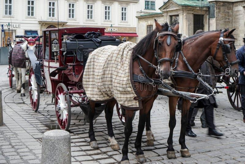 VIENA, AUSTRIA/EUROPE - 22 DE SEPTIEMBRE: Caballo y carro para h imagenes de archivo