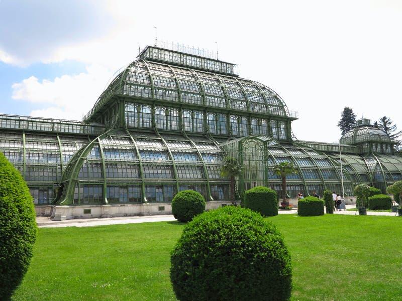 26 05 2018, VIENA, AUSTRIA: La casa de palma en Schoenbrunn Palac imagenes de archivo