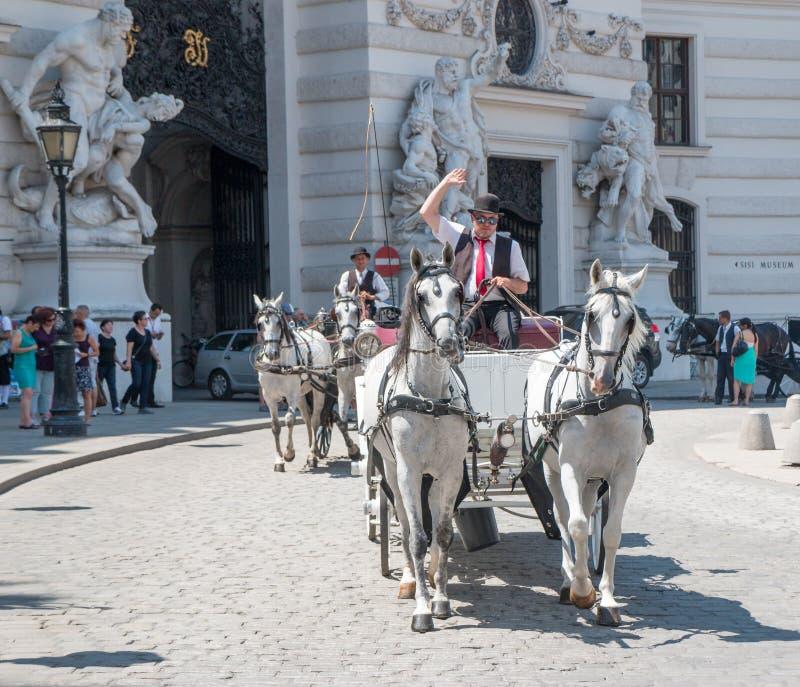 VIENNA, AUSTRIA - 3 LUGLIO 2015: Trasporto del cavallo fotografie stock libere da diritti