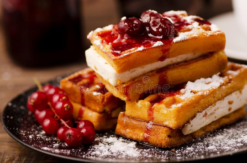 Viennese waffles with powder and berries royalty free stock images