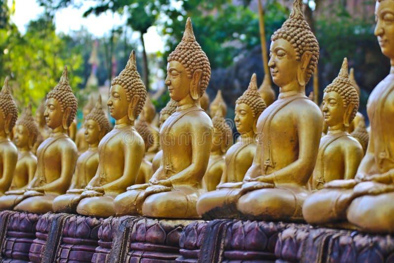 Vientiane landskap: 01 Maj 2019, Buddhastaty i Wat Sinxayyaram, buddismtr?dg?rden royaltyfria bilder