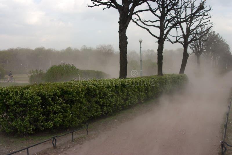 Download Viento Antes De La Tempestad De Truenos Foto de archivo - Imagen de planta, tiempo: 7276508