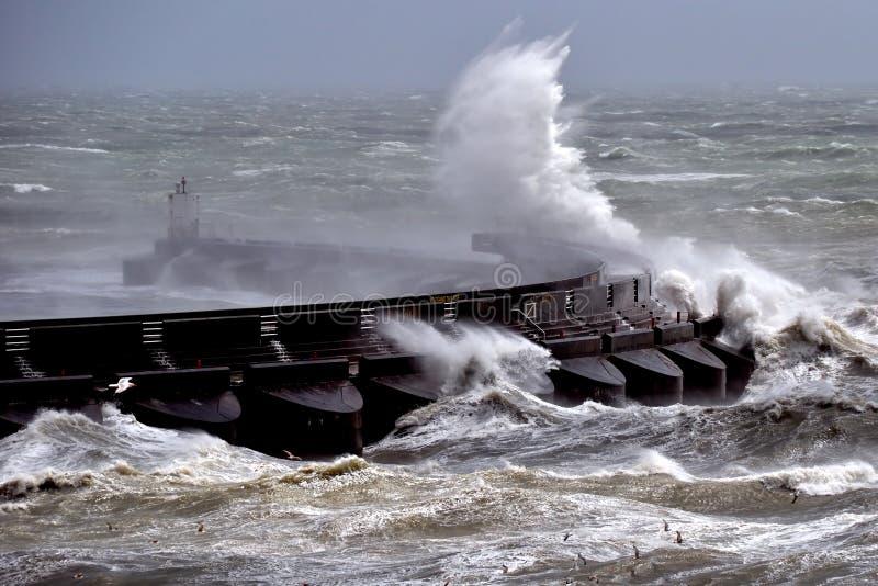 Viento de la fuerza de la tormenta foto de archivo libre de regalías