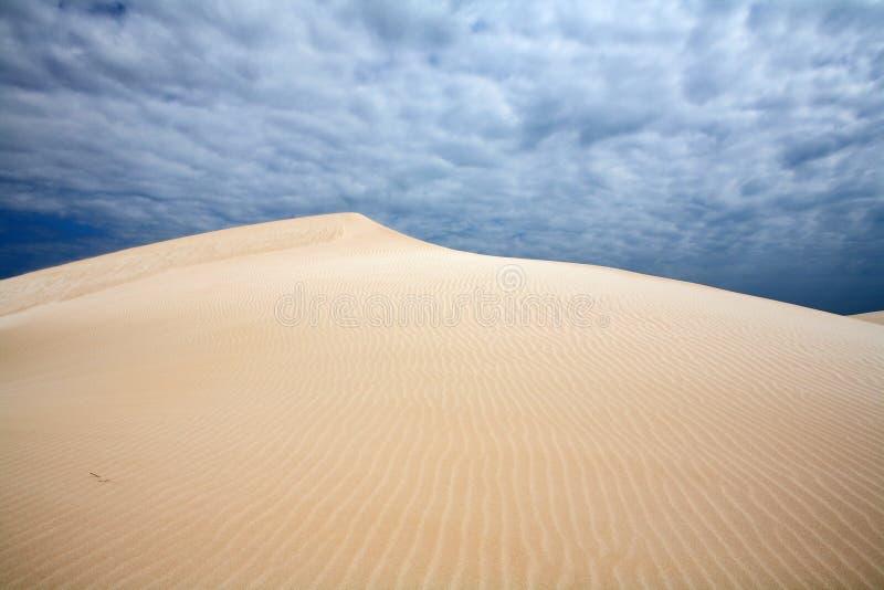 Viento en las dunas fotos de archivo libres de regalías