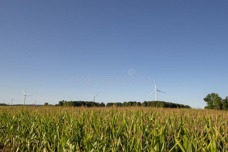 Viento-turbins, tierras de labrantío fotografía de archivo libre de regalías