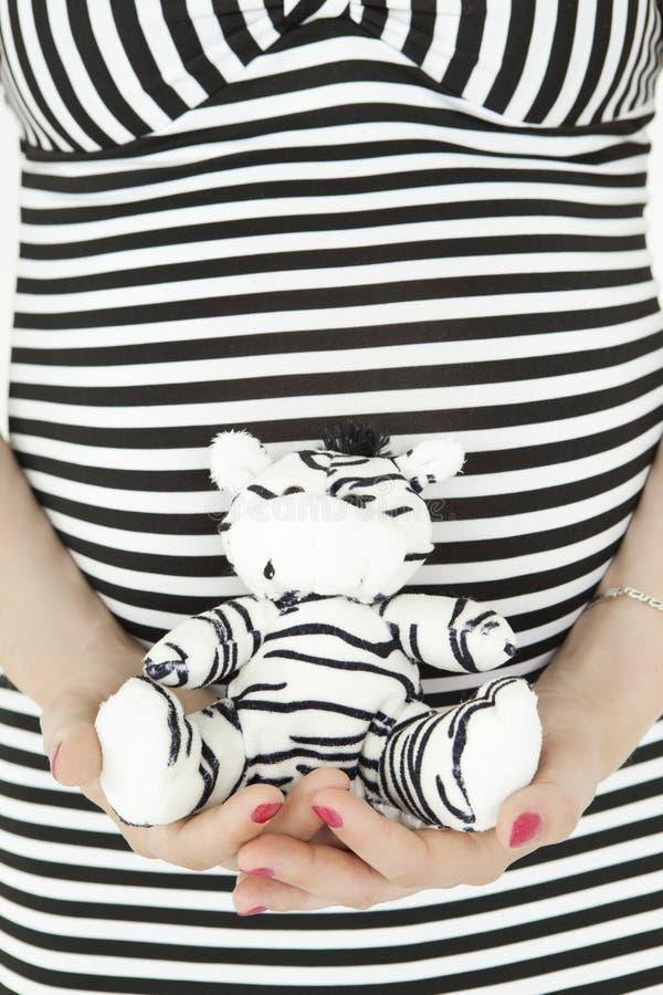 Vientre de la mujer embarazada en vestido pelado con el juguete de la cebra fotografía de archivo