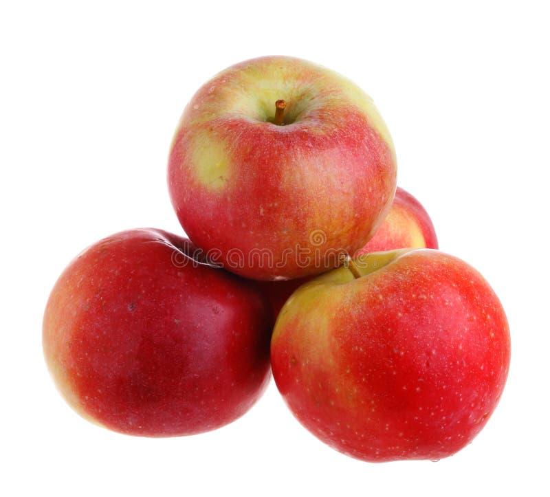 Vier Äpfel stockfoto