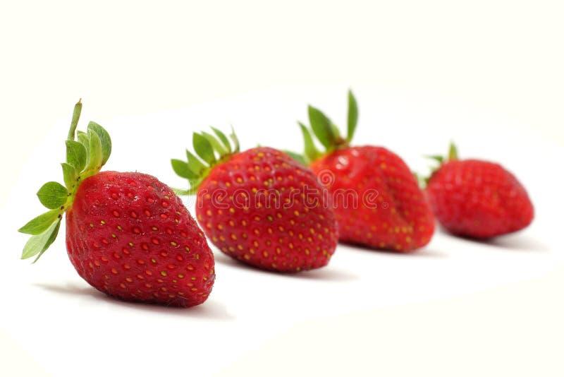 Vier Aardbeien stock foto's