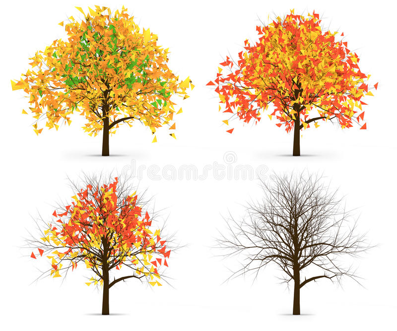Vier Autumn Trees Leaves Color Variation royalty-vrije illustratie