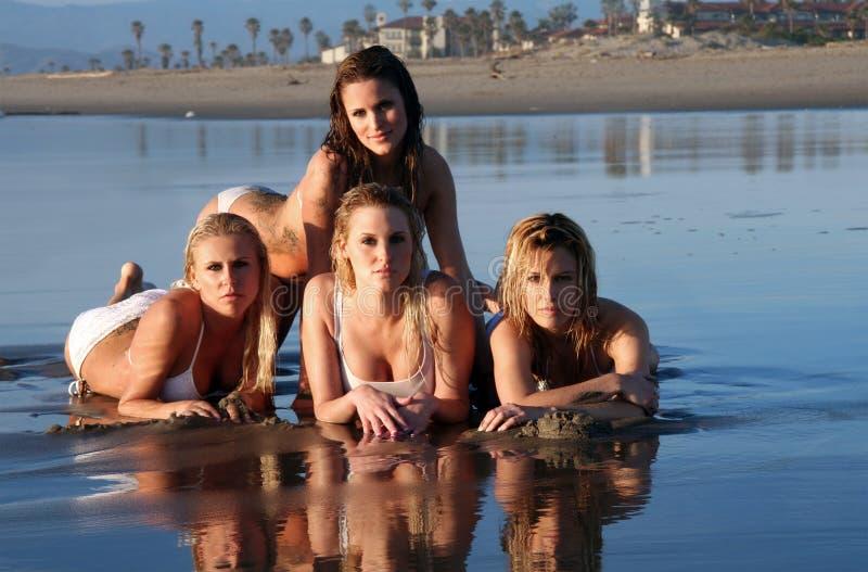 Vier bikinimodellen stock afbeeldingen