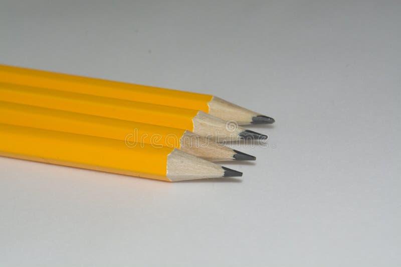 Vier Bleistifte lokalisiert lizenzfreies stockbild