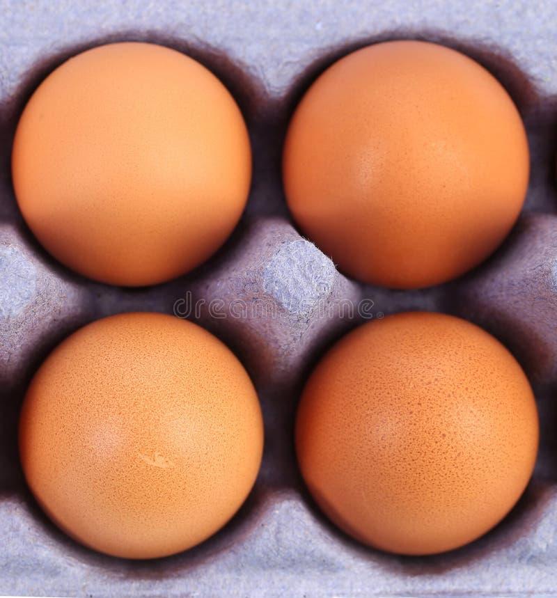 Vier bruine eieren in eidoos royalty-vrije stock afbeelding