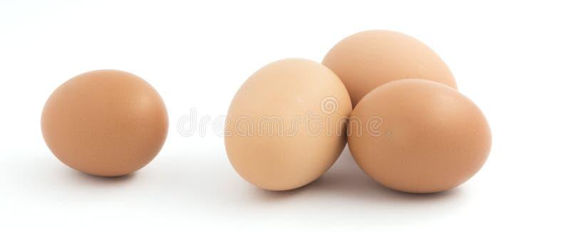 Vier bruine kippeneieren stock afbeeldingen