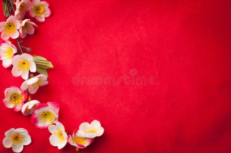 Vier Chinese Nieuwjaarachtergrond met mooie bloesem Fr royalty-vrije stock fotografie