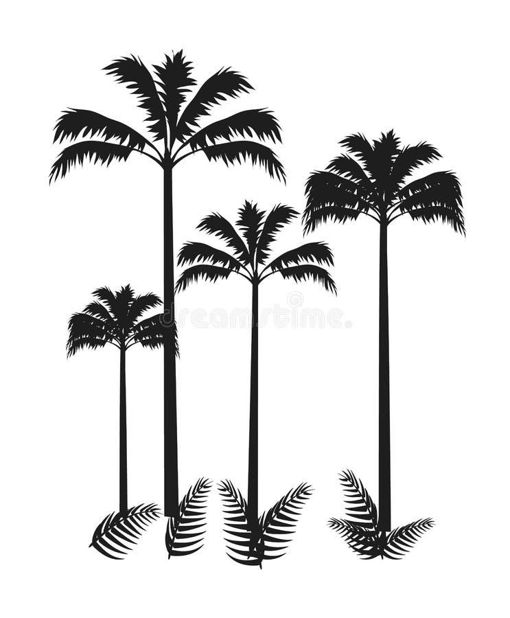 Vier die Palmen op Heldere Vectorachtergrond worden geïsoleerd royalty-vrije illustratie