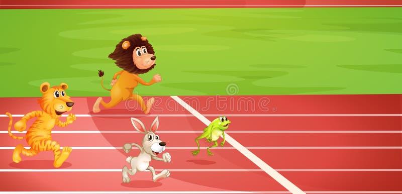 Vier dieren die een race doen royalty-vrije illustratie