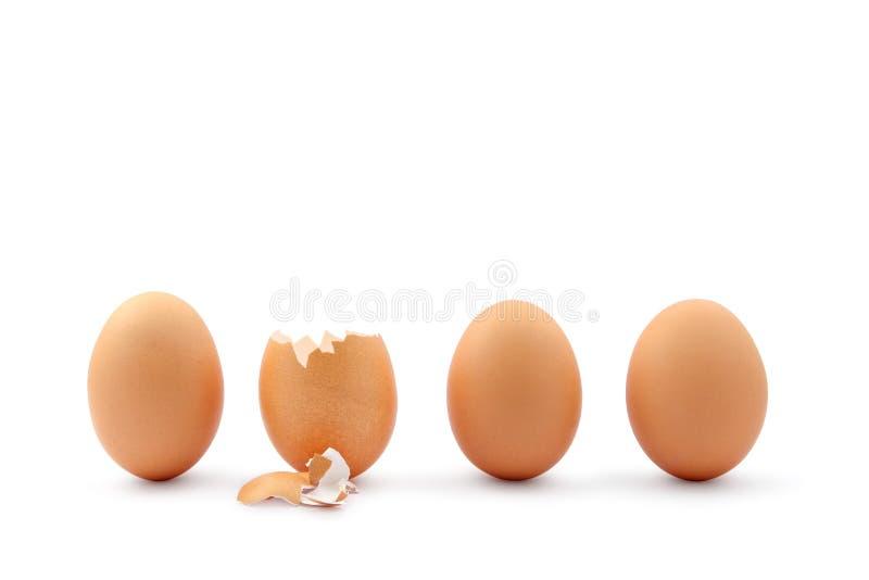 Vier eieren, uitgebroede één royalty-vrije stock afbeelding