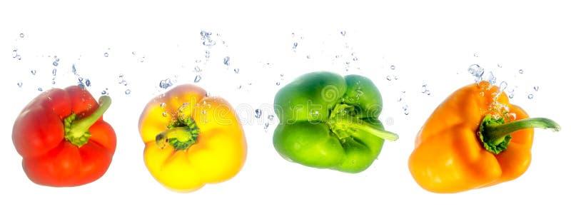 Vier farbige Paprika, die in das Wasser fallen stockfoto