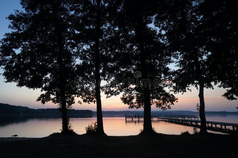 Vier große Bäume und später Sonnenuntergang durch den See an polnischem Masuria-Bezirk (Mazury) lizenzfreies stockbild