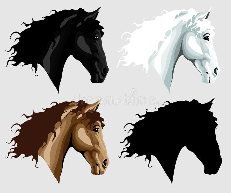 Vier hoofden van het paard stock foto's