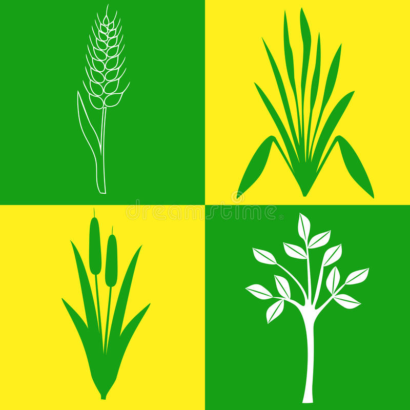 Vier Ikonen auf dem Thema von Anlagen, Botanik, arbeitend im Garten vektor abbildung