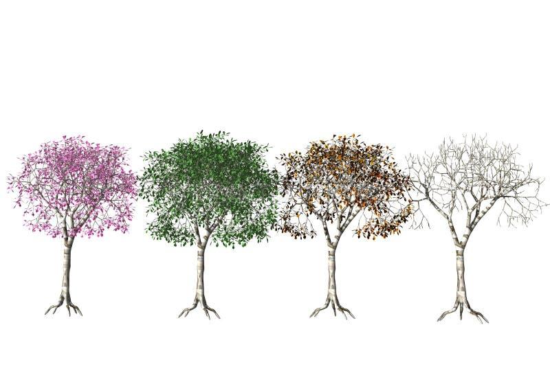 Vier Jahreszeiten. lizenzfreie abbildung