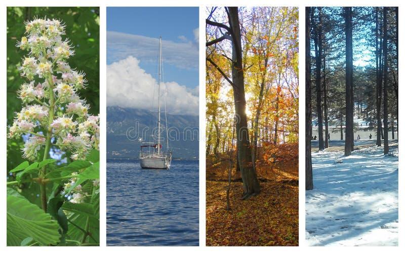 Vier Jahreszeiten stockfotos