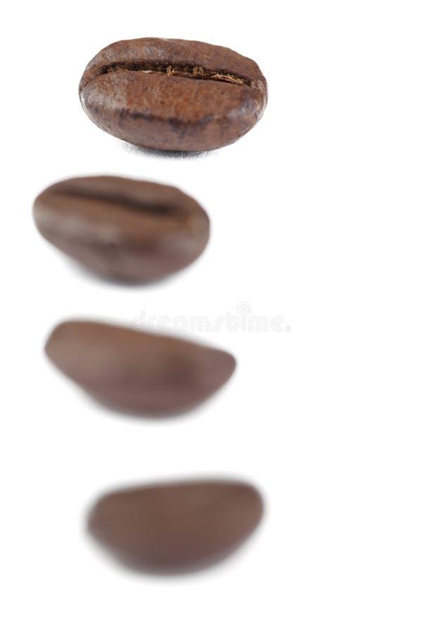 Vier Kaffeebohnen lizenzfreie stockfotos