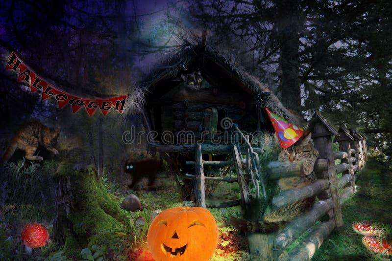 Vier katten vieren Halloween stock afbeelding