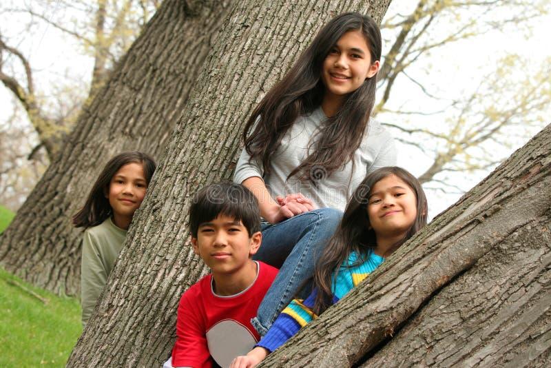 Vier Kinder in einem Baum stockfoto
