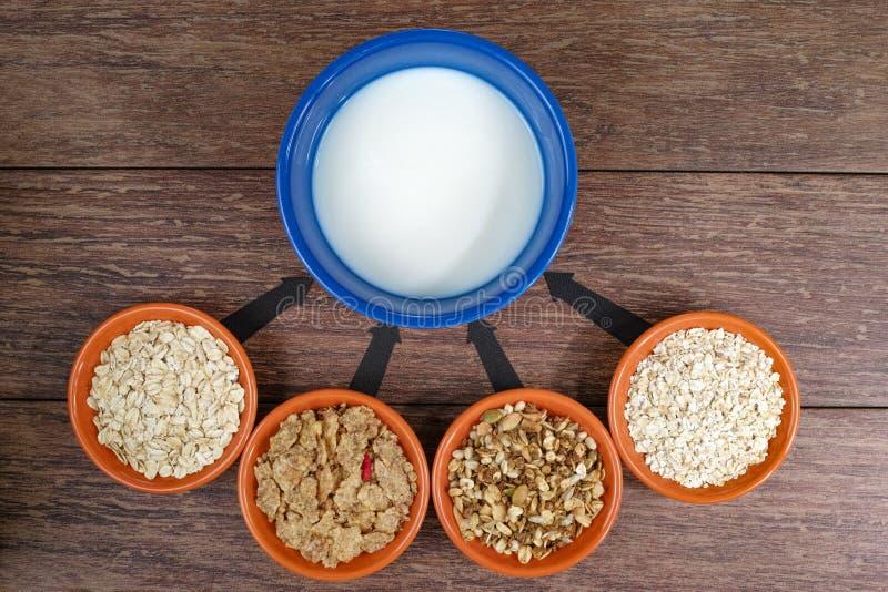 Vier kleine kommen met verschillende graangewassen en kom met melk, bedrijfsstrategie, besluit - het maken, keus royalty-vrije stock fotografie