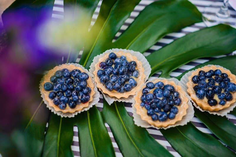 Vier koekjes met bosbessen bepalen ot het monstera` s blad stock afbeeldingen