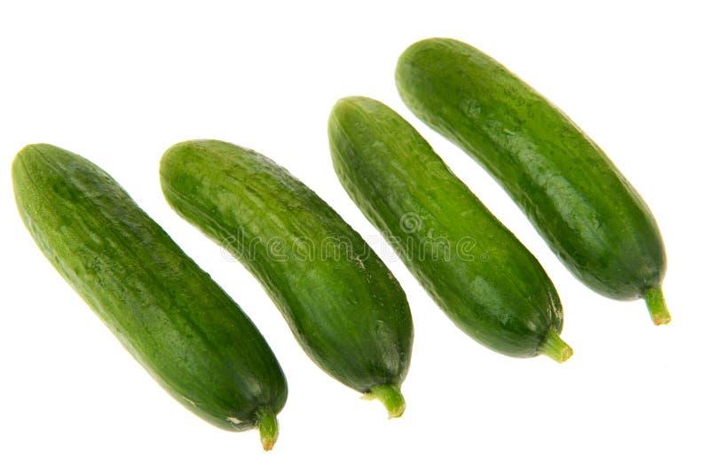 Vier komkommers stock afbeelding