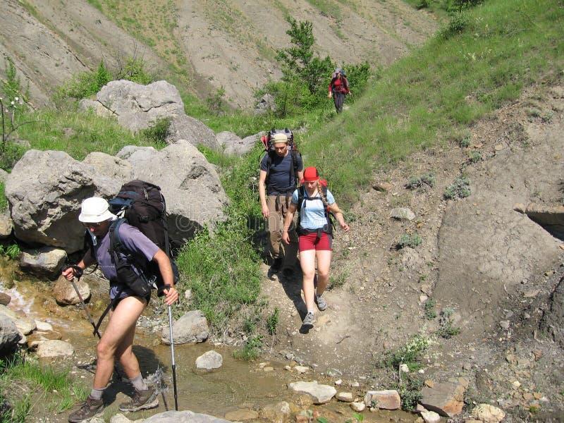 Vier Leute auf dem Sommer-Trekking lizenzfreie stockfotografie