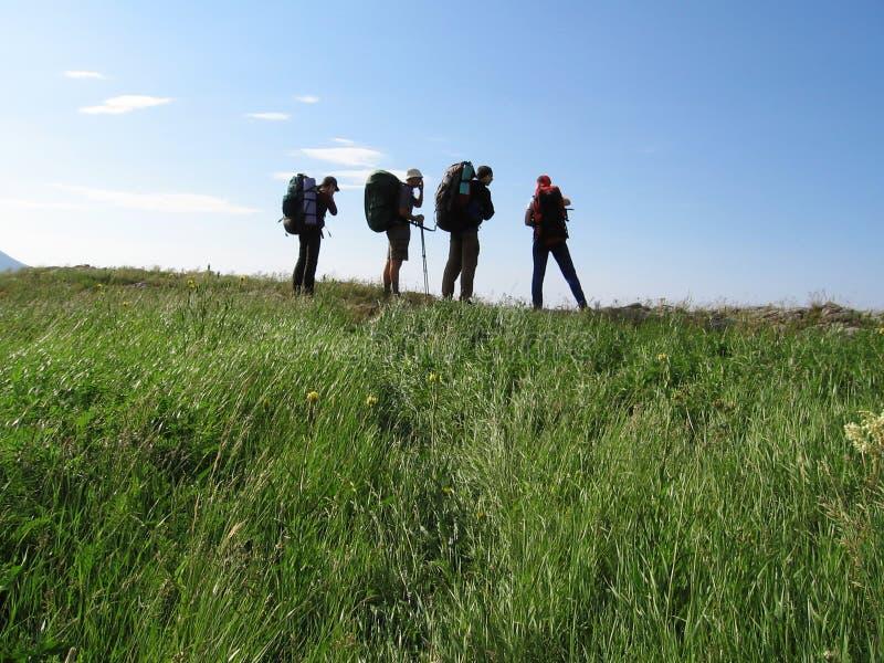 Vier mensen op het backpacking royalty-vrije stock afbeelding
